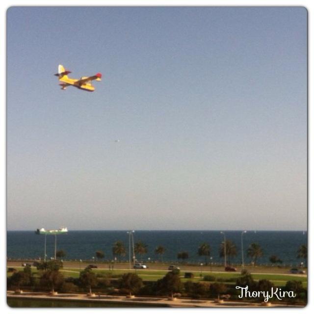 Hidroavión sobrevolando Palma