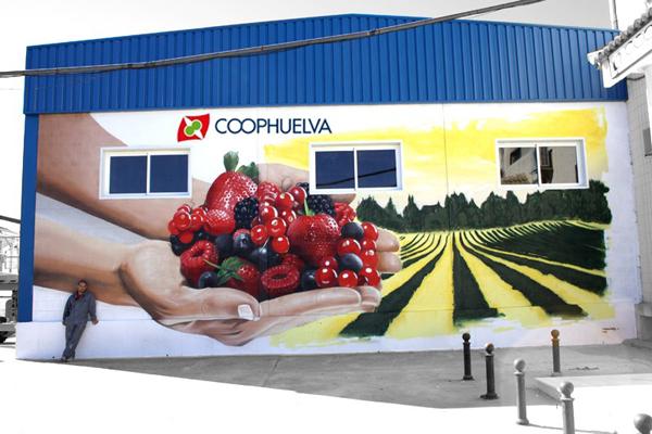 Una cooperativa de fresas