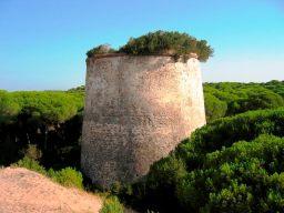 Torre San Jacinto, Almonte